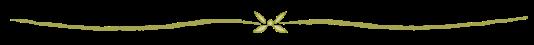 bamboo-divider-line